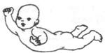 Развитие ребенка в 5 месяцев. Положение лежа на животе.