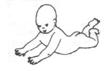развитие ребенка в 6 месяцев положение лежа на животе