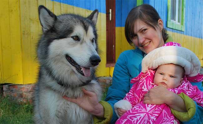 Новорожденный и собака